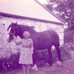 Nellie was also born in Maggie's cottage. Nellie baked and cooked for the men on the farm. She worked hard in the fields taking out the oats after Mick cut it with the scythe,tying it and picking the spuds. Nellie always wore the apron and went to town in Oldcastle (4miles away)on her bike to bring home the groceries. Enjoy Nellie's kitchen now with homemade bread scones. Nellie had 2 sons Martin and John.