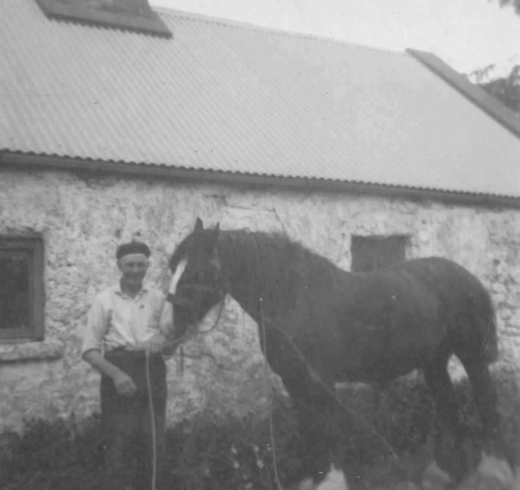 Uncle Benny and Bob the work horse at Loughcrew