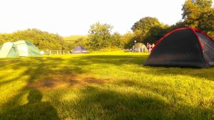Campsite in Meath